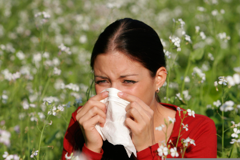 pollenallergi vuxen ålder