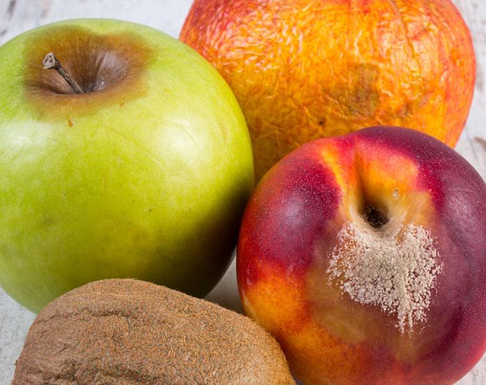 Möglig frukt