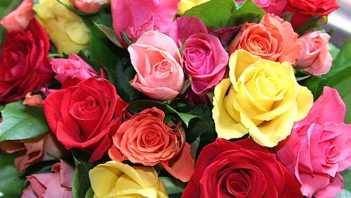 vad betyder sju rosor