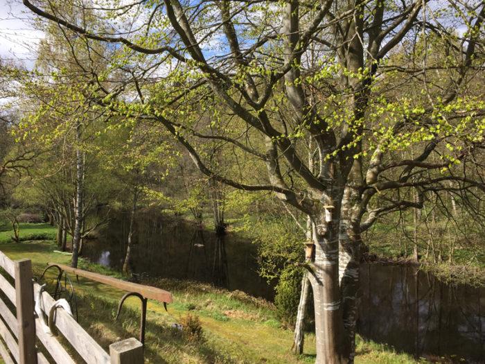Jennie Everman Thuressons familj har ett fritidshus i Jämshög i Blekinge