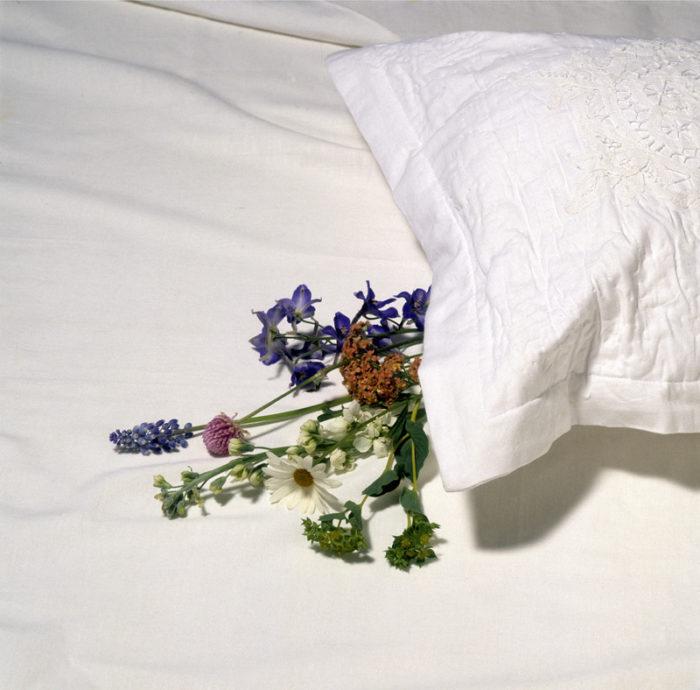 Sju blommor under kudden på midsommar