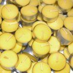citronella-anti-mosquitos-01