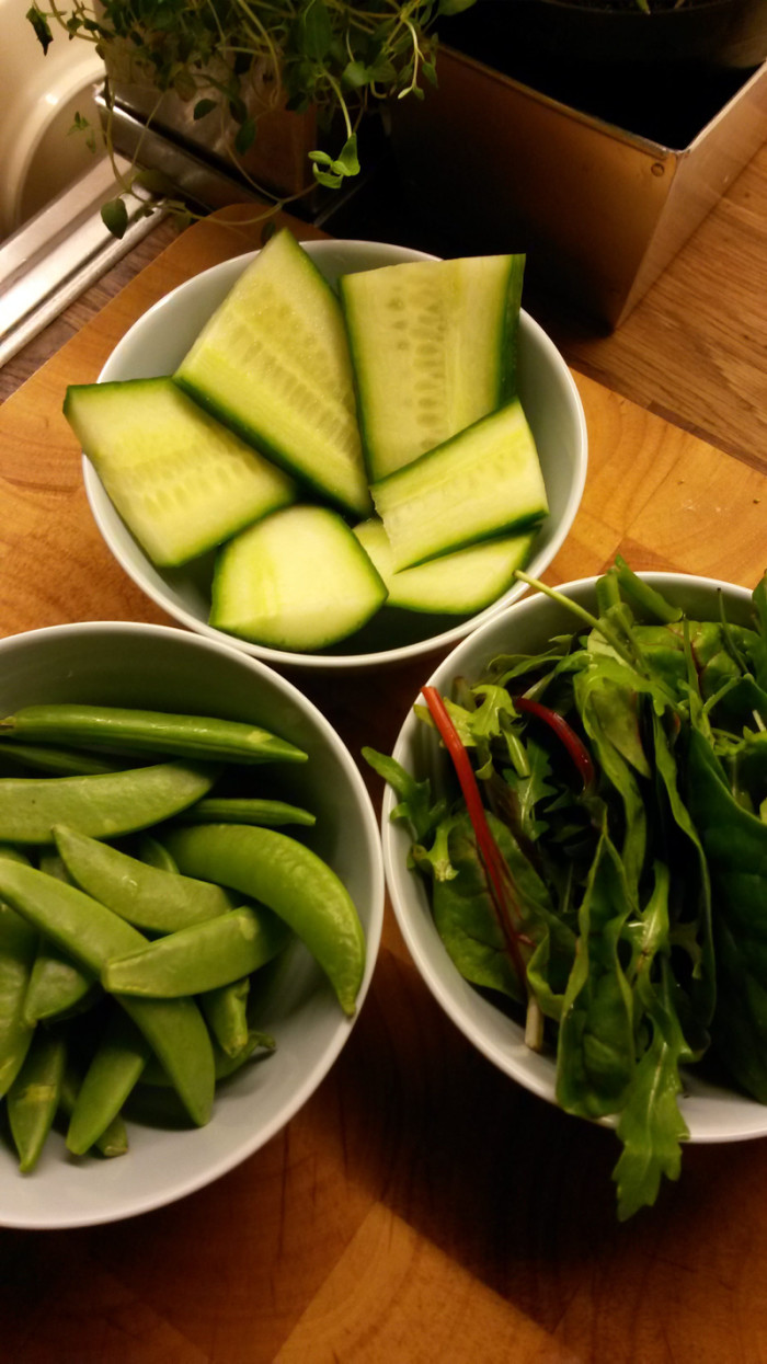 Gurka, sockerärtor och sallad är gott grönt till.